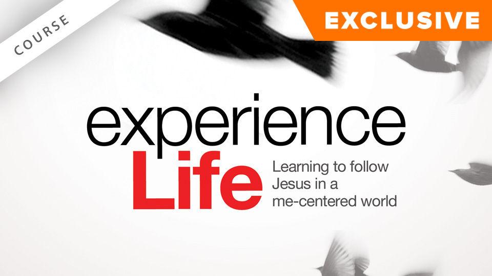 experience Life!