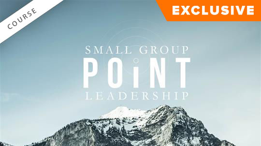 Small Group Point Leadership