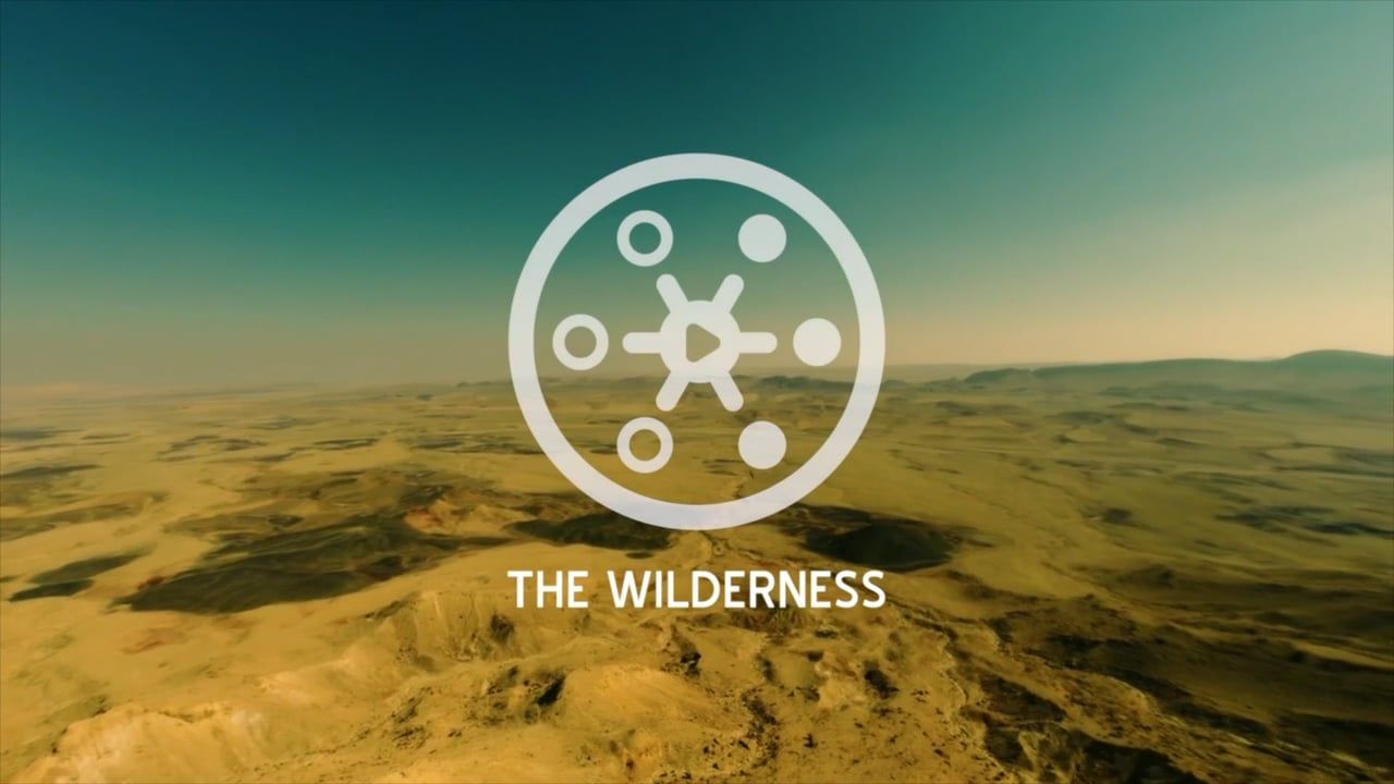 Experience The Wilderness