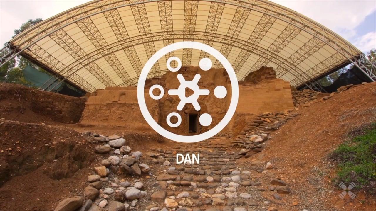 Experience Dan