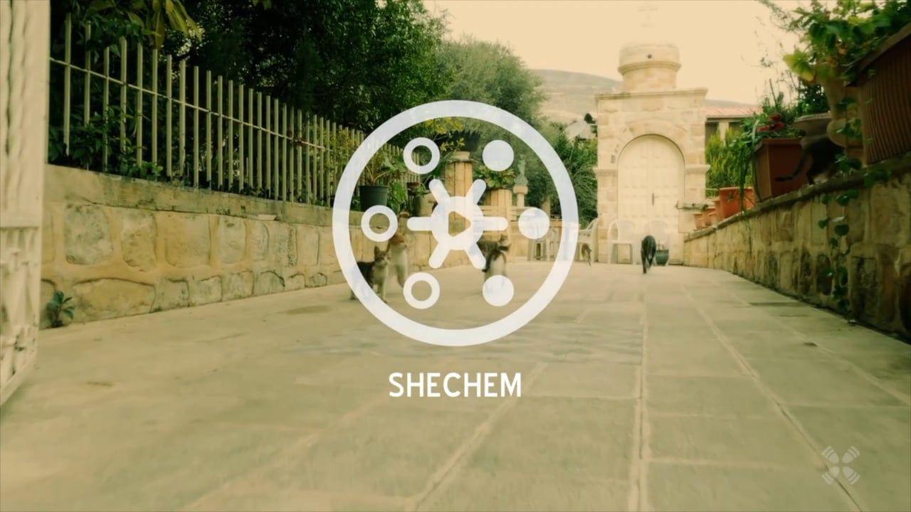 Experience Shechem