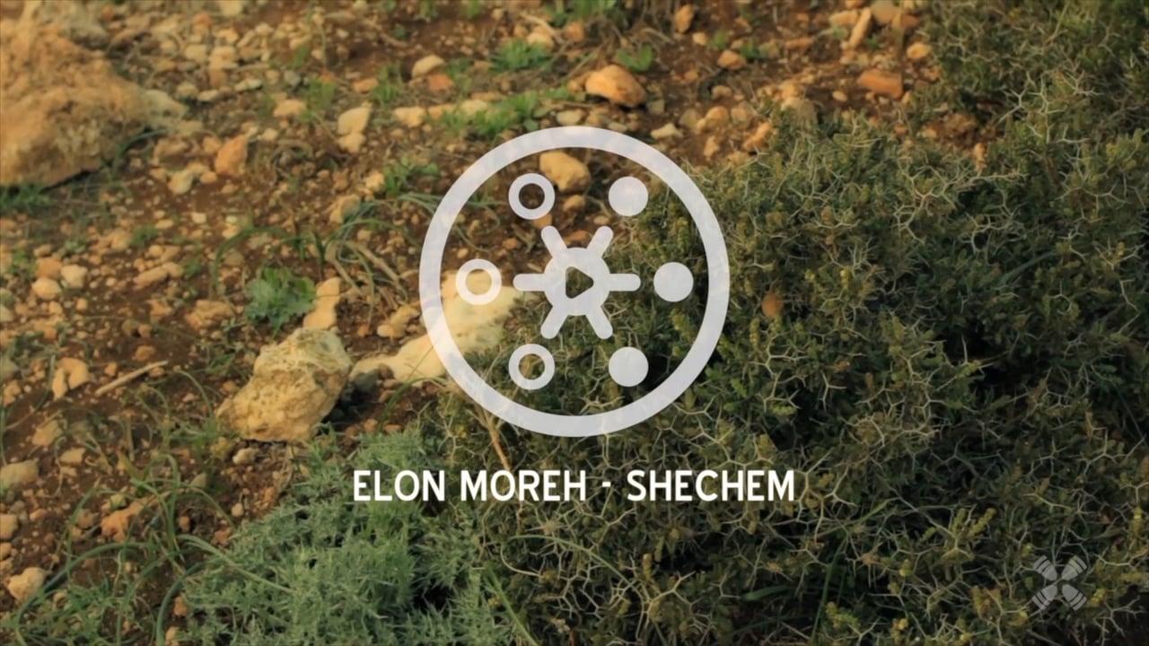Experience Elon Moreh - Shechem