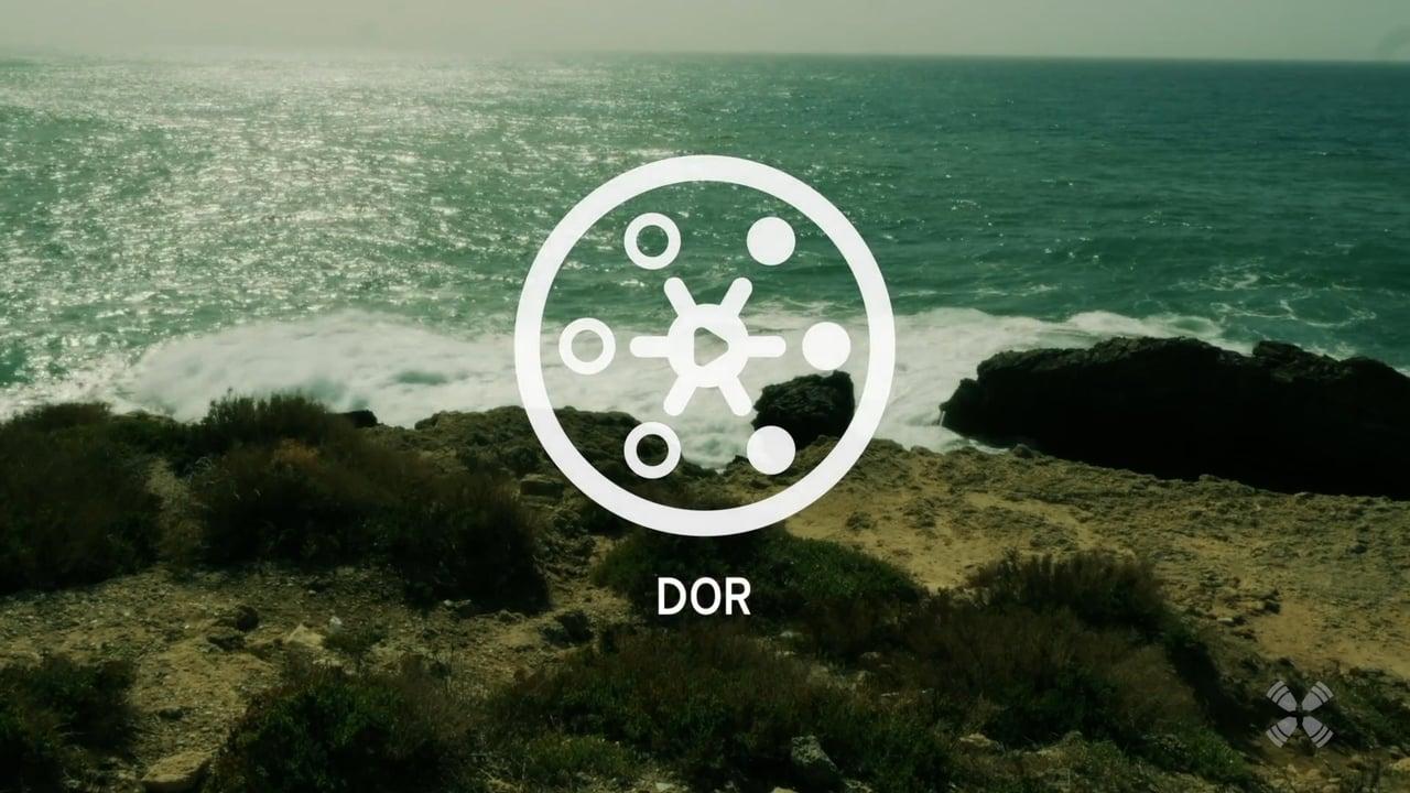 Experience Dor