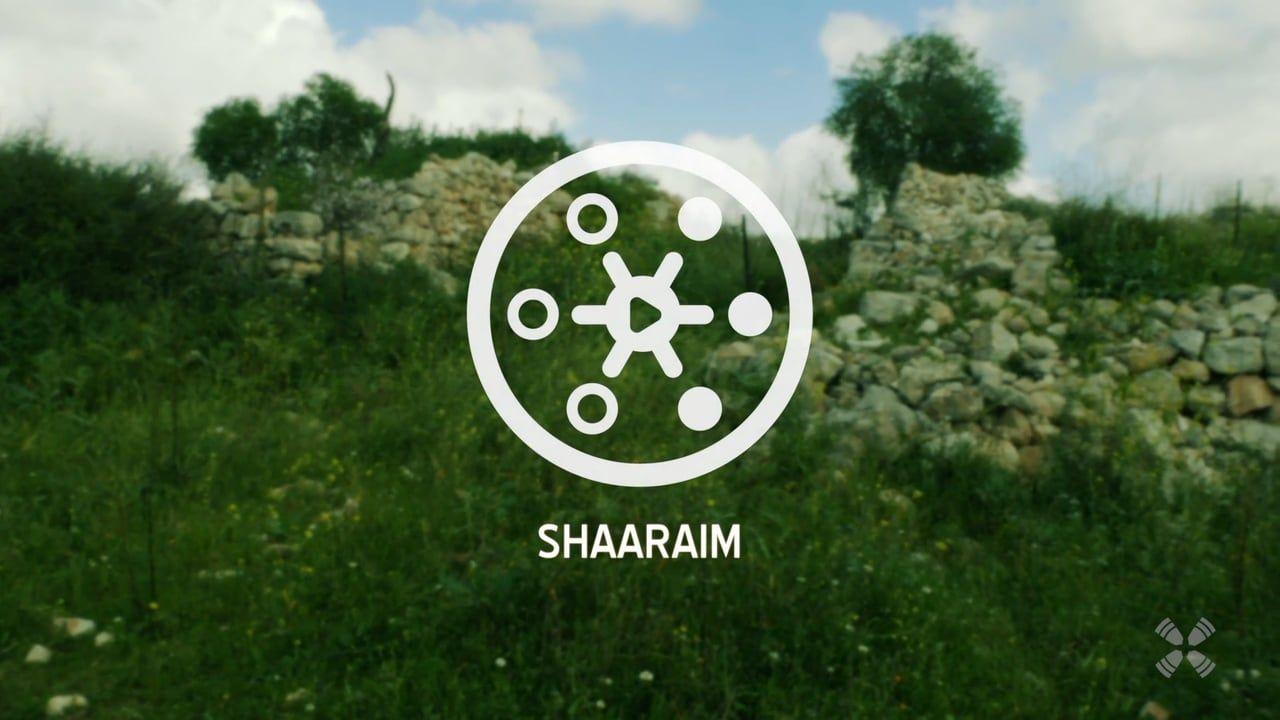 Experience Shaaraim