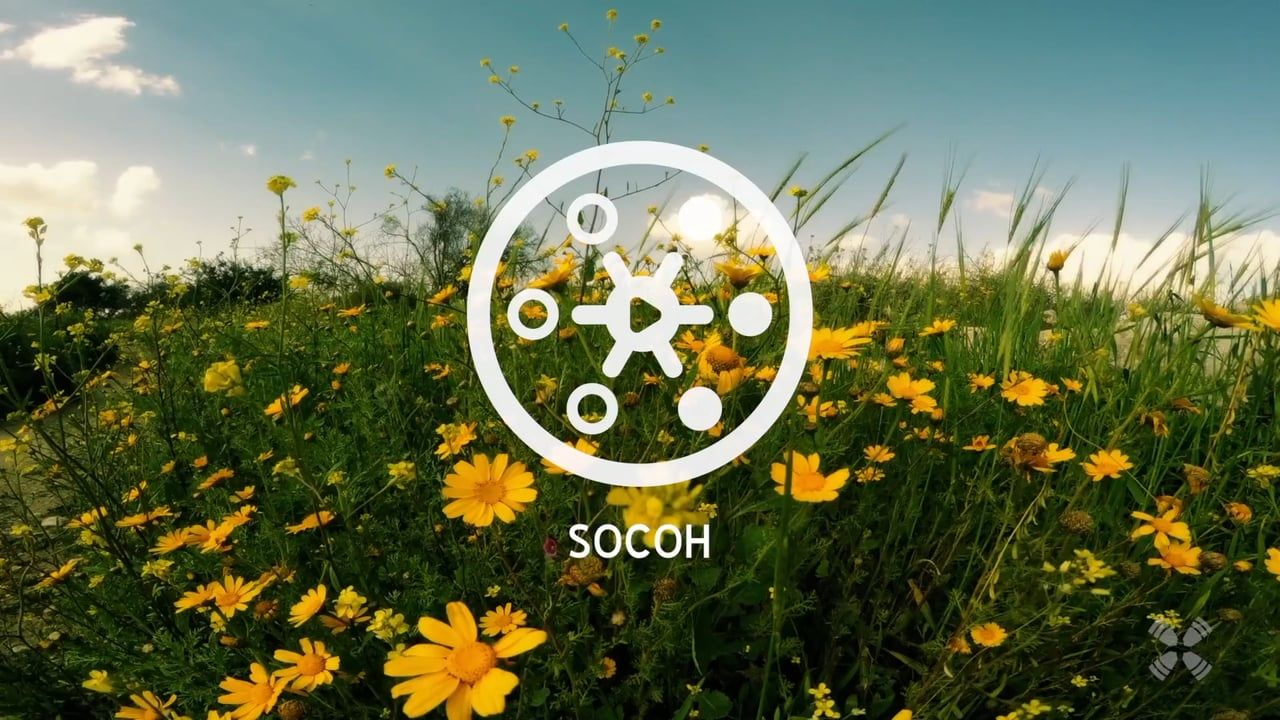 Experience Socoh