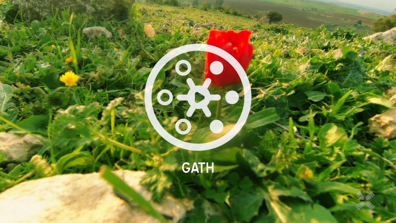 Experience Gath