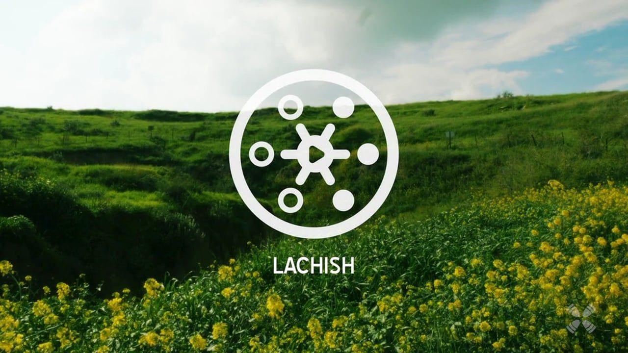Experience Lachish