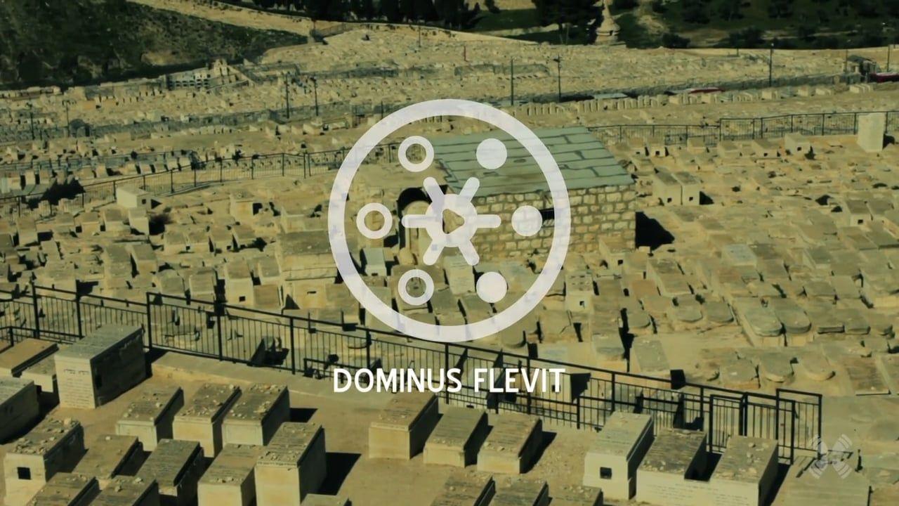 Experience Dominus Flevit