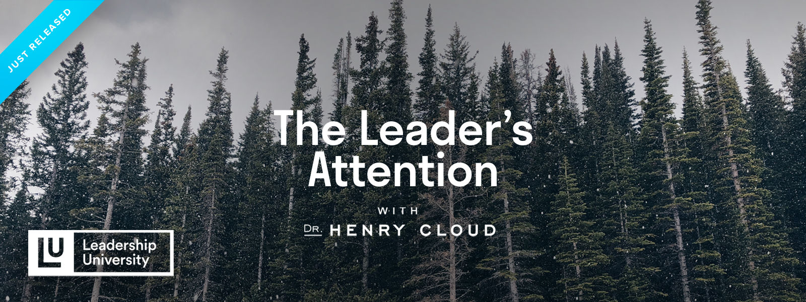 The Leader's Attention