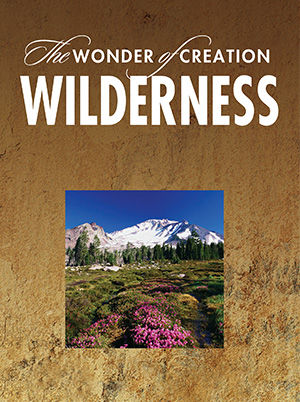 The Wonder of Creation - Wilderness
