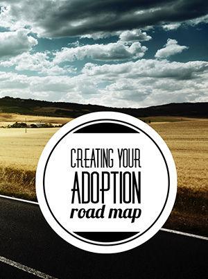 Adoption Roadmap