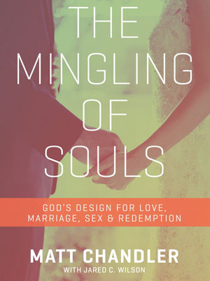 The Mingling of Souls (2015)