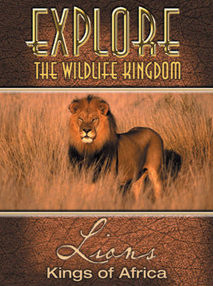 Explore The Wildlife Kindgom: LIONS Kings of Africa