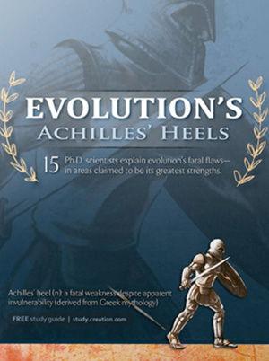 Evolution Achilles Heel