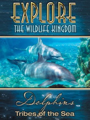Explore The Wildlife Kingdom : DOLPHINS Tribes of the Sea