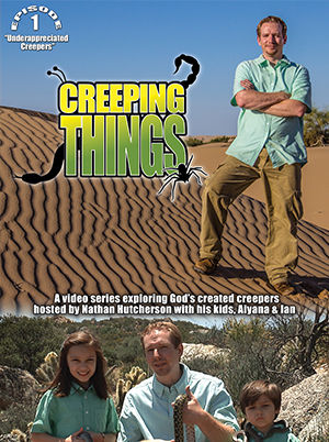 Creeping Things - Underappreciated Creepers