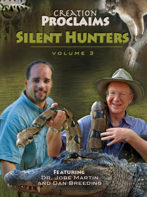 Creation Proclaims - Silent Hunters