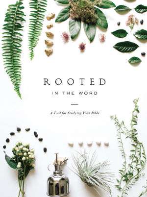 Rooted in the Word - A Tool for Studying the Bible