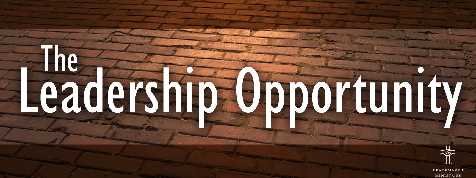 The Leadership Opportunity