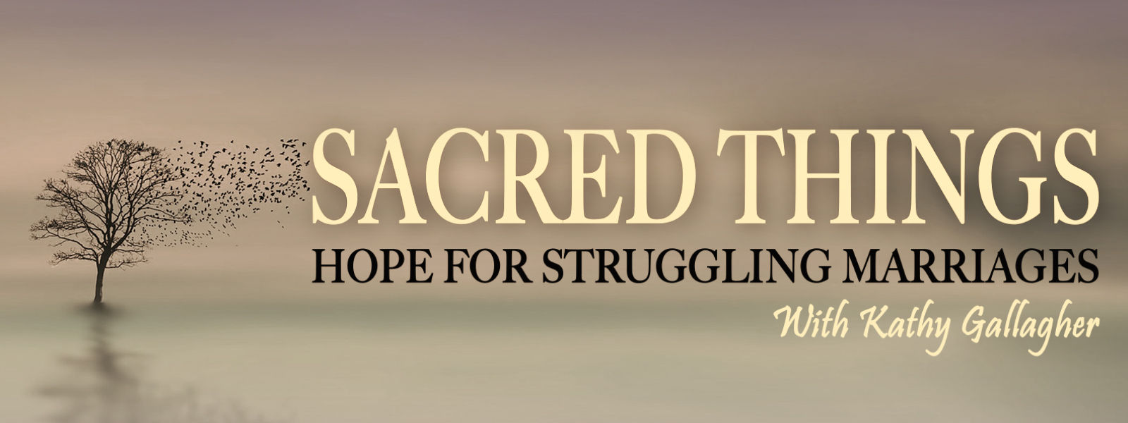 Sacred Things: Hope for Struggling Marriages