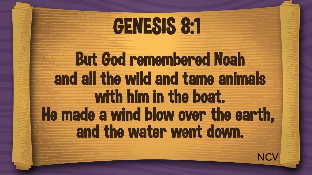 Noah: God Remembered Noah